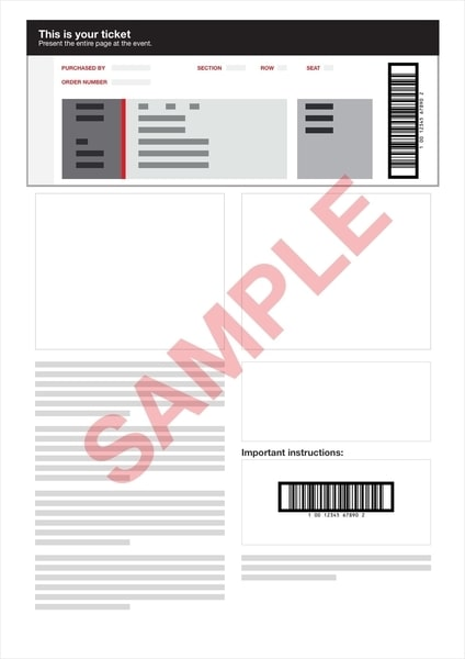 PDF ticket example